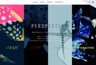 PERSPECTIVE | 生きているミュージアム ニフレル