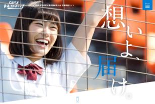 岐阜青春フルスイング|2017 第99回全国高校野球選手権岐阜大会