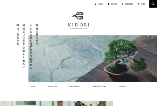 盆栽、多肉植物、塊根植物、観葉植物通販/KIDORI -キドリ-